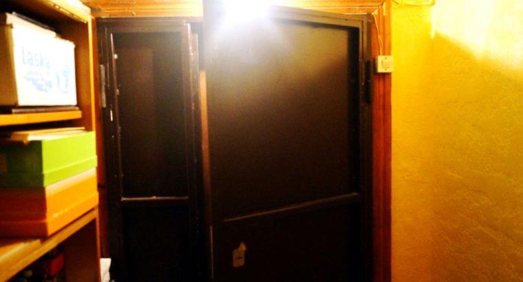 Металлическая дверь дустворчатая