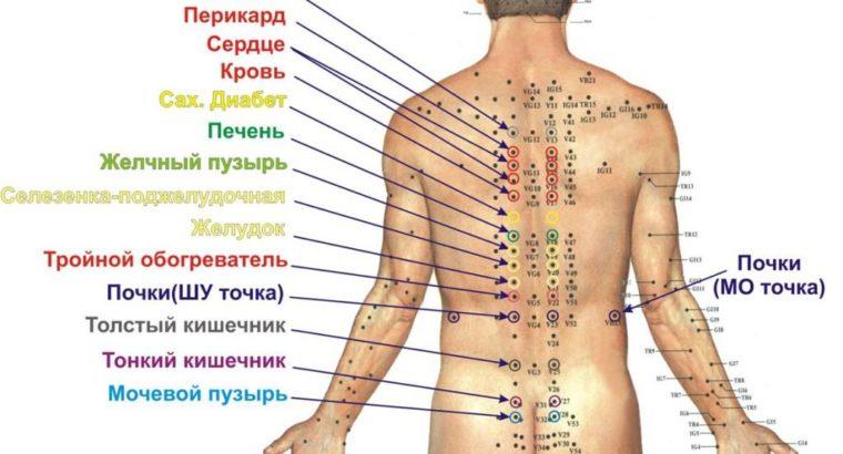 Акупунктурный аппликатор спины