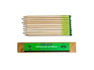 Растущие карандаши