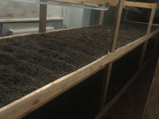 Продам стеллажи, для выращивания зелёного лука