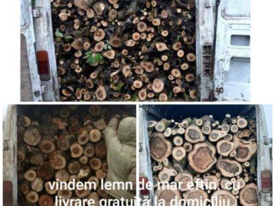Vindem lemn de mar eftin. livrare la domiciliu 067542890