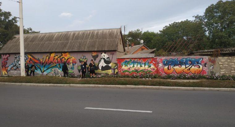 Заказать граффити ПМР