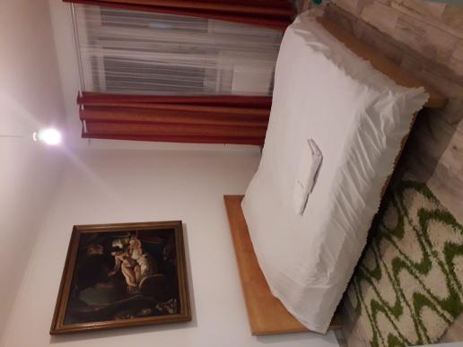 Dau apartament cu doua camere in chirie pe luna cu 300€