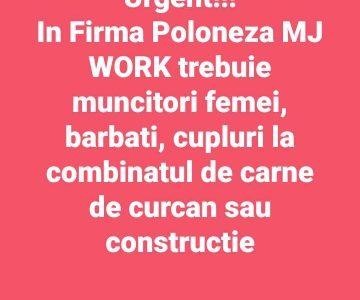 Легальна Работа в Польше